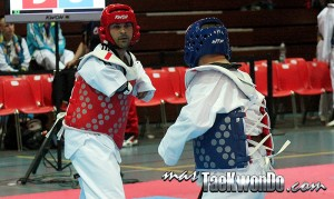 Para-TaekwondoKyorugui_2013