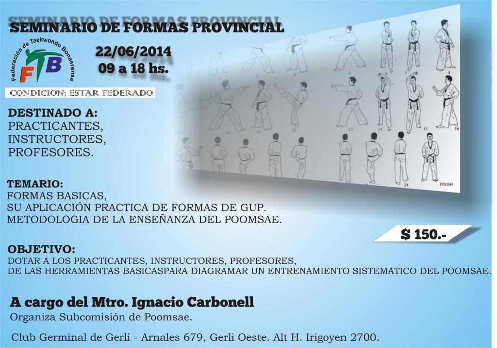 poomsae_seminario_junio2014