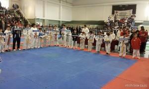 2do torneo 2014 participantes